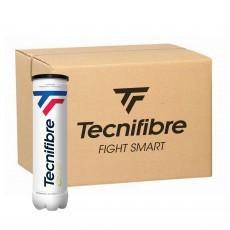 Carton 36 tubes de 4 balles Tecnifibre CLUB