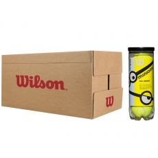 Carton de 24 Tubes de 3 Balles Wilson Minions Stage 1